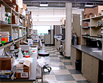 Icogenex Biotech Incubator Space Available for Lease.